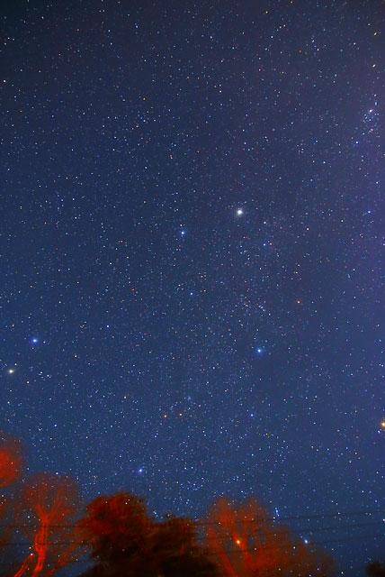 冬の星を追尾撮影