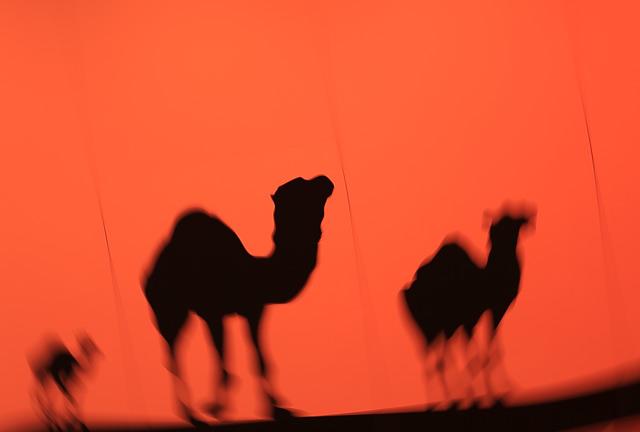 ラクダのアート