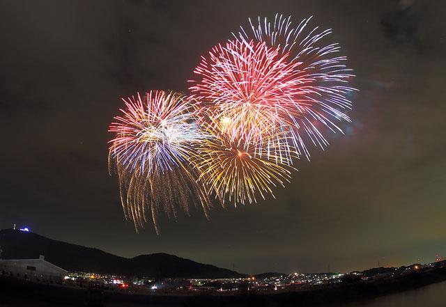 中央公園から見る田原打ち上げ花火