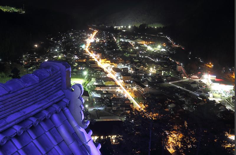天守閣から望む岐阜市の夜景