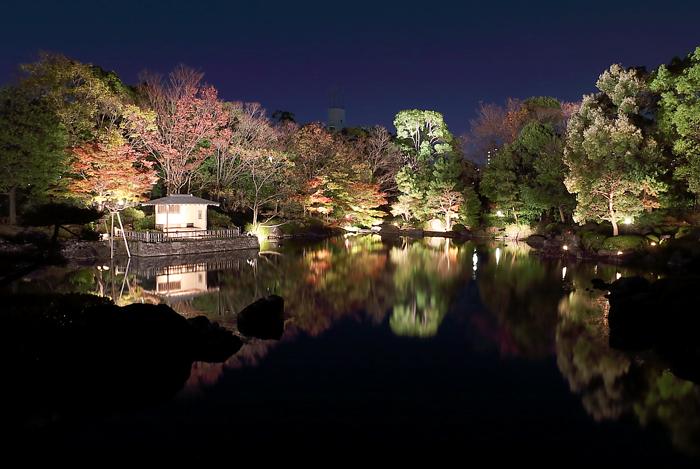 豊臣橋から見える庭園ライトアップ