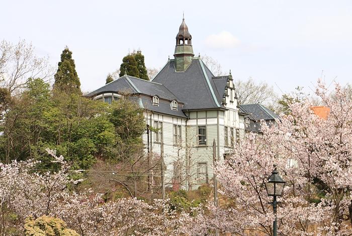 聖ザビエル天主堂と桜