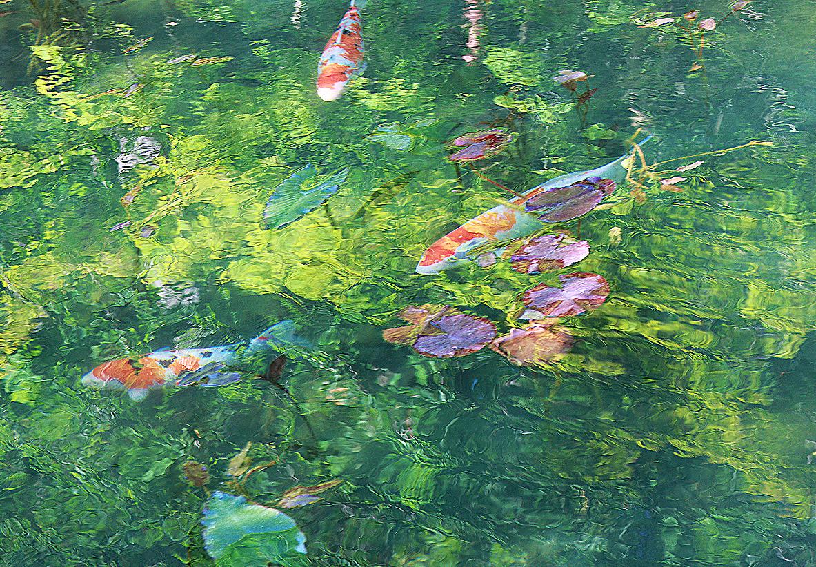 名画「モネの池」