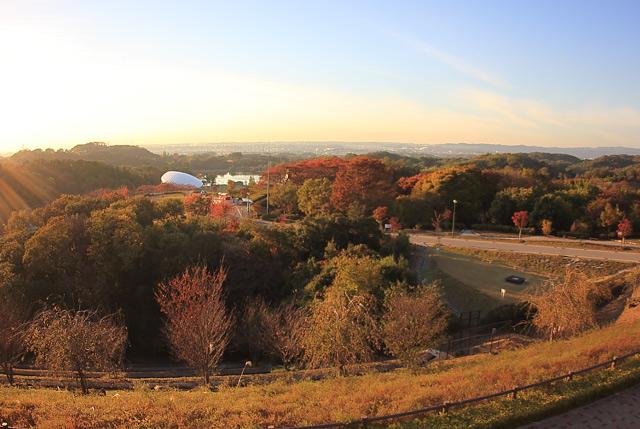 PA展望台からの風景
