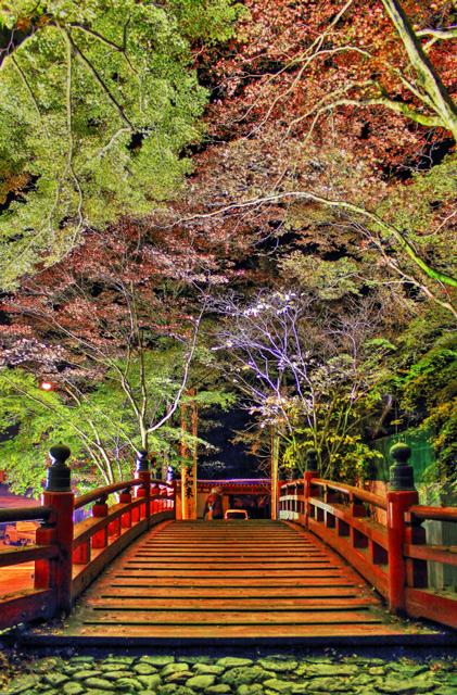 赤色の木製の橋と紅葉