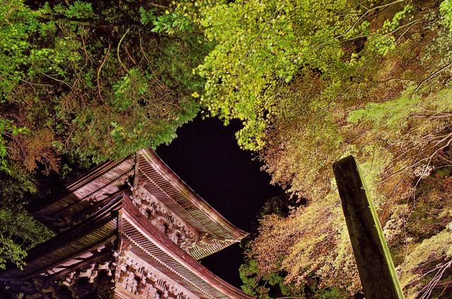 ライトアップされた横蔵寺