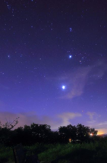 桜公園の星空