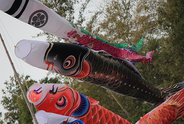 上げ馬神事の鯉のぼり