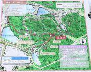 親林楽園のマップ