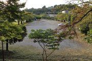 名古屋証券グラウンド(臨時駐車場)
