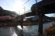 伊豆急行線を鉄道教下から撮影