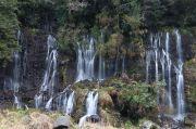 白糸の滝側面