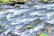 渓流その2(HDR)