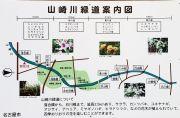 山崎川の桜まつりの観光マップ