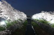 かなえ橋からのライトアップ