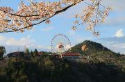 恵那峡ランドの観覧車と桜