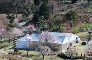 梅目祭り会場