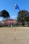 ゴルフのグリーンと梅