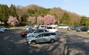 三多気の桜の駐車場
