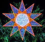 星のイルミネーション