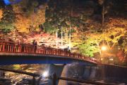 ライトアップされた香嵐橋