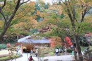 東山植物園休憩所