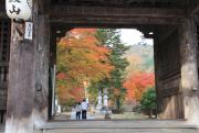 仁王門から望む紅葉