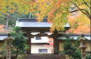 華厳寺の紅葉