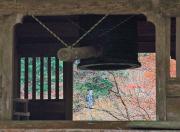 除夜の鐘と紅葉