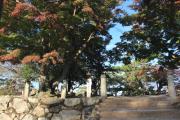 金ノ間櫓跡