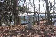 逆茂木(さかもぎ)