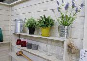 ウオールラックと観葉植物