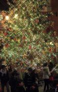 フローラルプレイス内に飾られた大きなツリー
