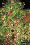 デンパークのクリスマスツリー