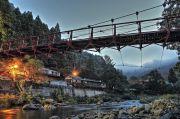 朝霧と吊り橋