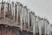 合掌造りの屋根から垂れ下がる氷柱