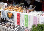 和歌山県のハウス柿